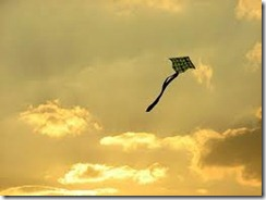 kite_flying2