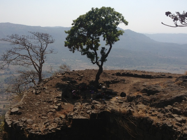 The solitary tree providing some shade. We ate our packed lunch under this tree and then rested waiting for the advanced party to return